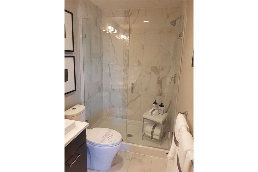 Inline Frameless Shower Door 009