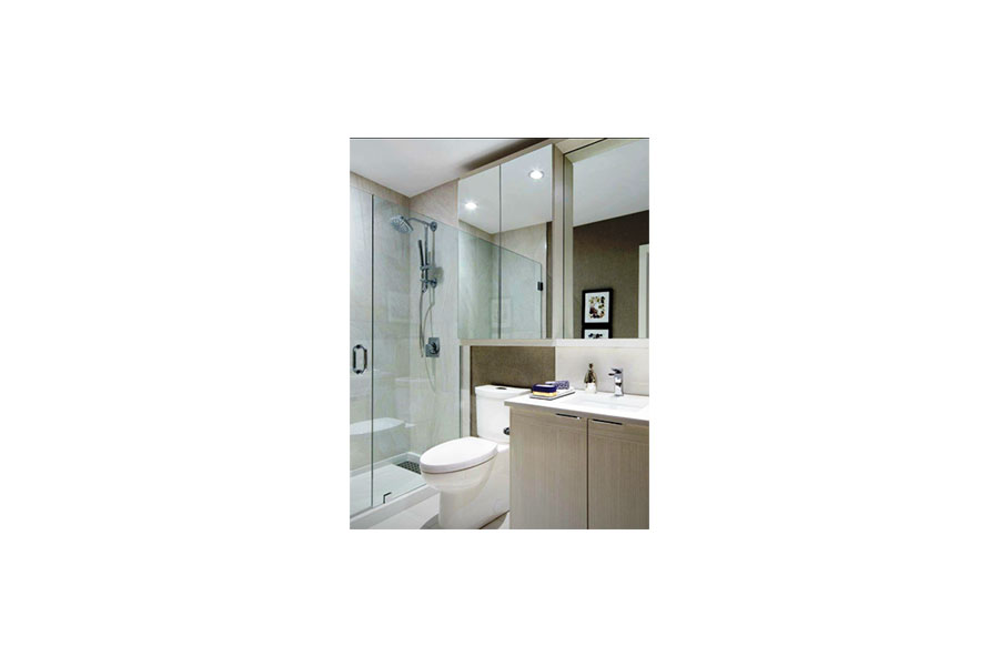 Inline Frameless Shower Door 010