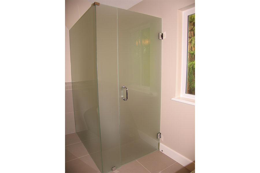 Frameless Water Closet Door 007